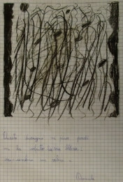 PUPILS DRAW LACER-ACTIONS (24)