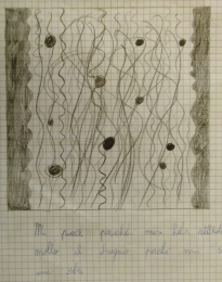 PUPILS DRAW LACER-ACTIONS (25)