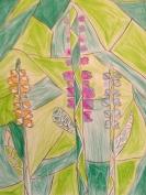 THE PLANT I LIKE 2012 (14)