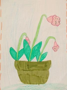 THE PLANT I LIKE 2012 (7)