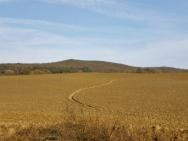 TUSCANY LANDSCAPE, MOUNT AMIATA