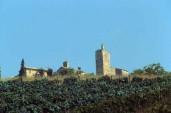 MERCATELLO SUL METAURO, PESARO-URBINO, MARCHE, ITALY (5)