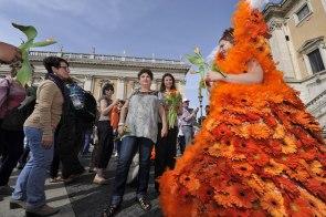 Roma, Festa floreale in onore del nuovo Re d'Olanda (4)