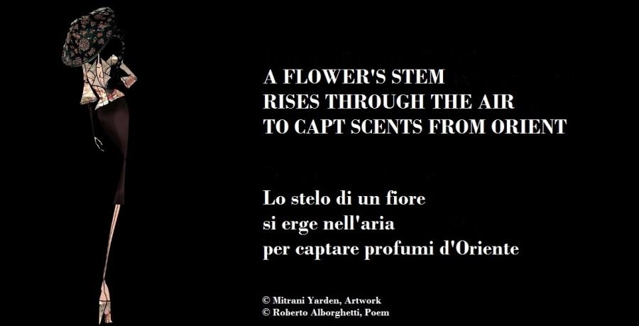 HAIKU - FLOWER 2