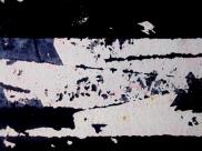 DSCN3522 (640x480)