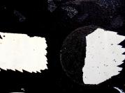 DSCN3547 (640x480)