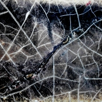 ROME, THE UNIVERSE OF MACRO: CRACKS AND DECOMPOSED MATTERS #2