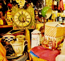 Marcellina and her amazing old shop