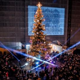 Consorzio-Visit-Ferrara-Inaugurazione-albero-2