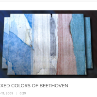 RETROSPECTIVE #2: MIXED COLORS OF BEETHOVEN (VIDEO, 2009)