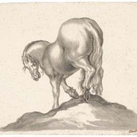 Cavallo visto da dietro, Giovanni Battista Foggini