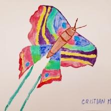 Cristian Morini