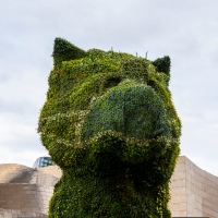 FACING THE PANDEMIC #1 / THE GUGGENHEIM MUSEUM BILBAO'S ICONIC PUPPY REVEALS A NEW LOOK SPORTING A FACE MASK