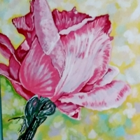 YEAR OF THE ROSES / PHOTO ALBUM: FROM CANADA THE ROSE PAINTED BY BEVERLEY