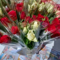 YEAR OF THE ROSES / PICTURES FROM BROXTOWE  WOMEN'S PROJECT (BWP), UK